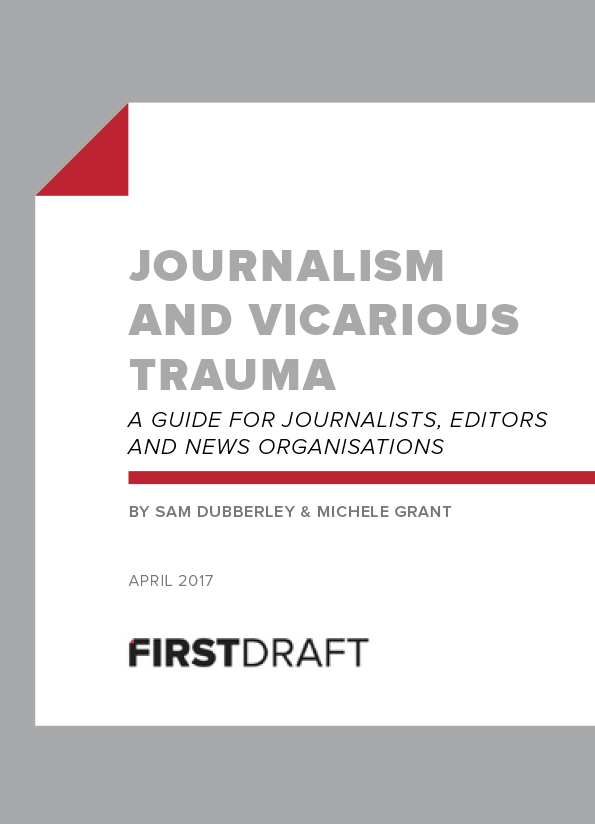 Publication cover has grey and black text on white background with a red line and folded page icon.